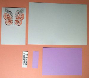 Butterfly Card Pieces Cut Out