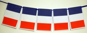 French Flags Bunting Banner